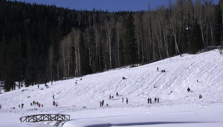 Winter-Greer Lodge Arizona