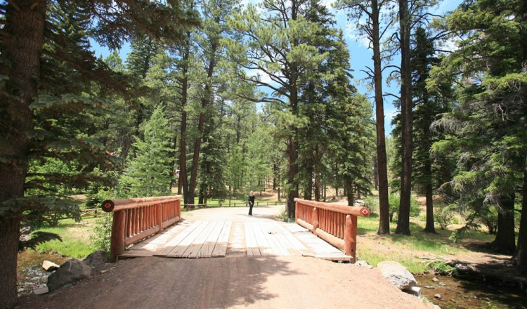 Scenic walk - Bridge in Greer, AZ