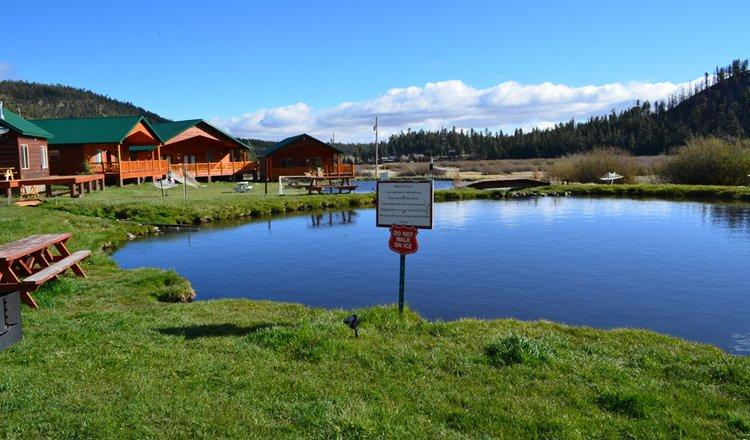 283 cabin sleeps 12 greer lodge arizona for Cabins near greer az