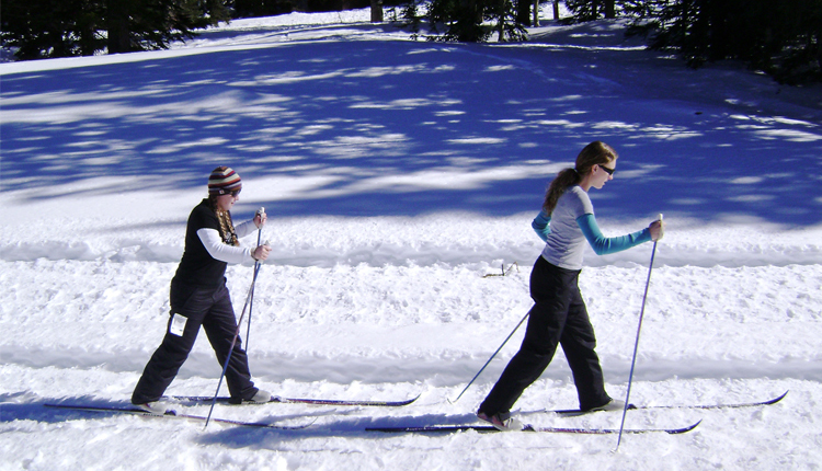 Cross Country Skis - Greer, Arizona