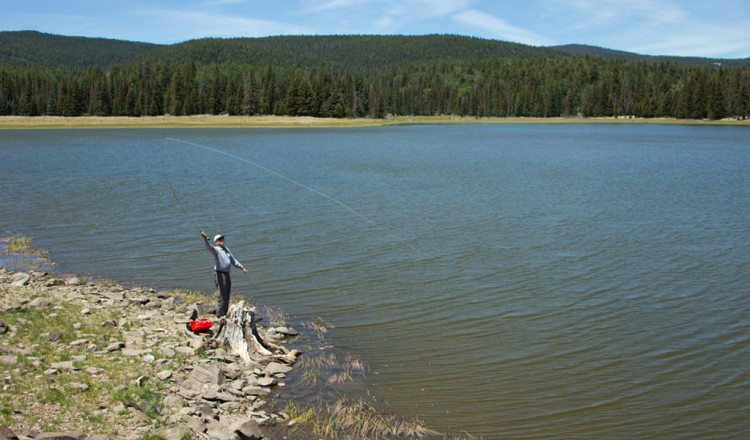 Reservoir Lake. Fishing Lake in Greer, Arizona