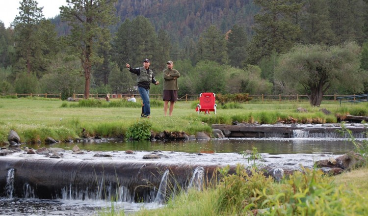 Fly fishing in Greer AZ on Little Colorado River