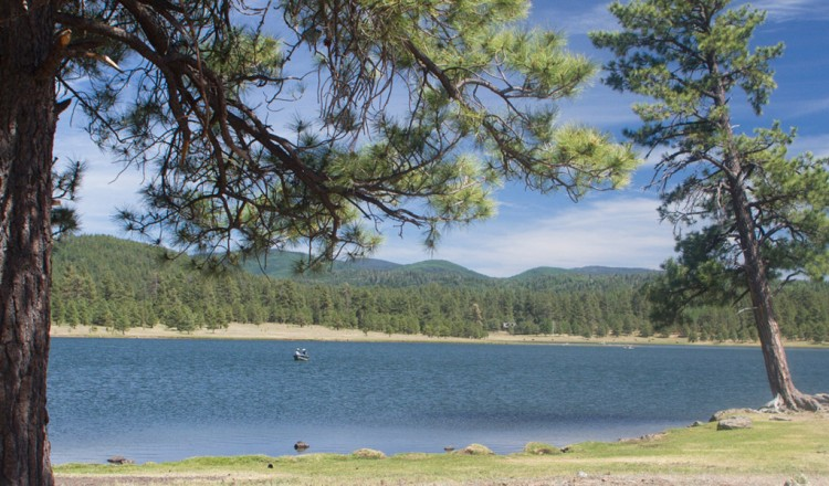 Hawley Lake in Arizona, Fly Fishing