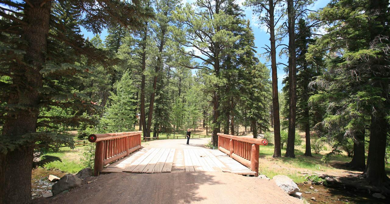 Squirrel on trail - Arizona Hiking