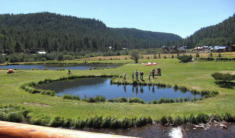 Private Trout Ponds at Greer Lodge