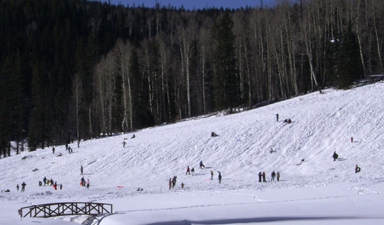 Sledding Hill - Greer Lodge AZ