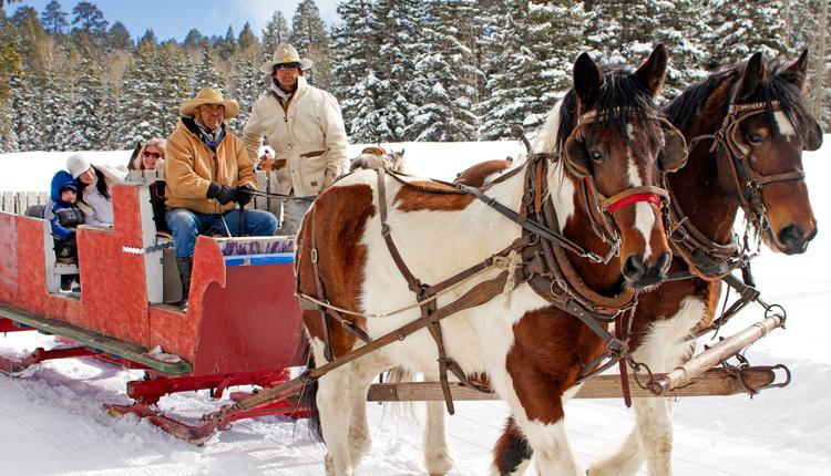 Winter Sleigh Ride in Greer, AZ