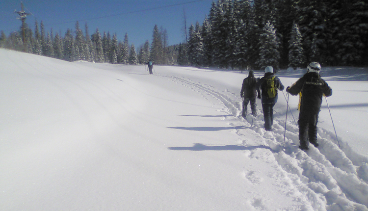 Snowshoeing - Greer, Arizona