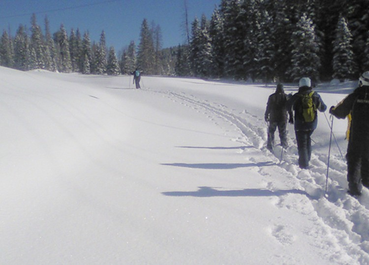 Cross Country Skiing & Snowshoes