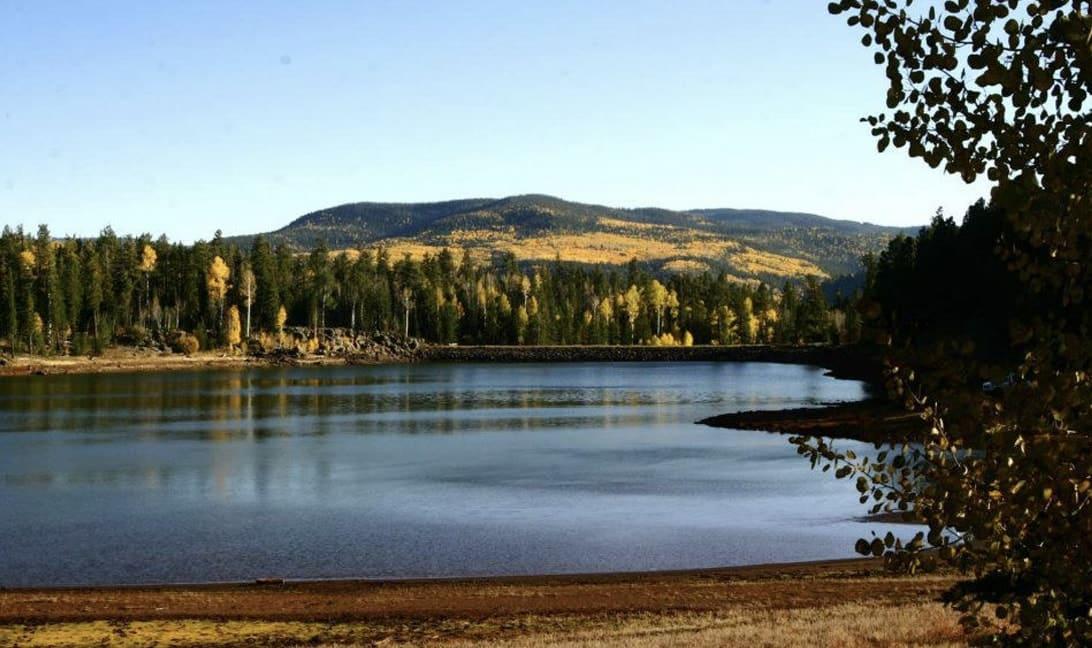 Fall hikes & scenic walks
