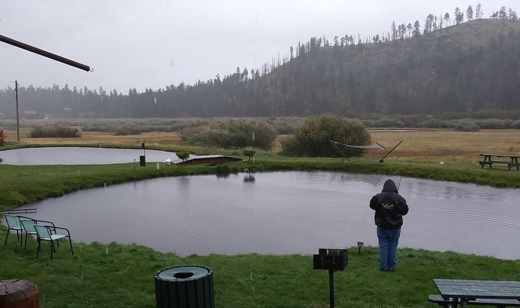 Fly Fishing at Greer Lodge