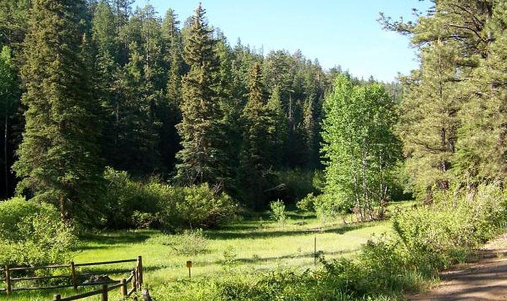 Hiking Trails in Greer, AZ